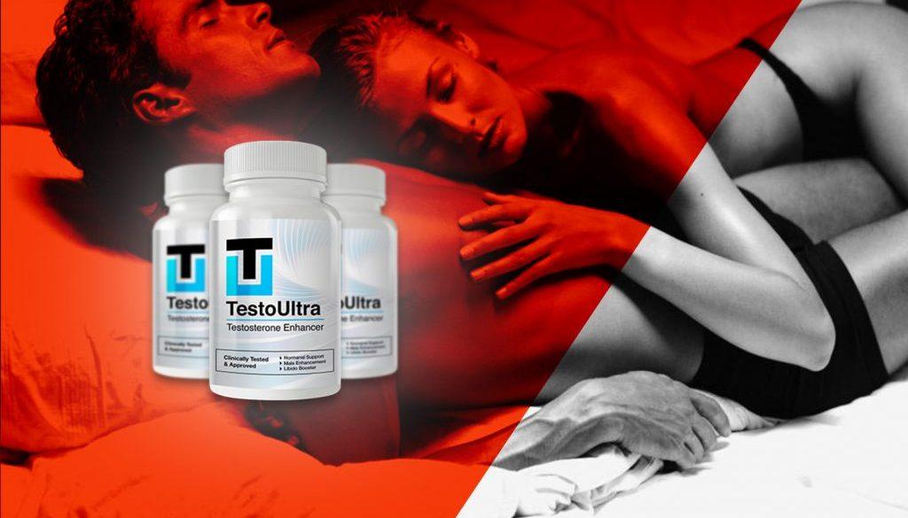 testo_art13